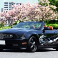 フォード-マスタング-カーラッピング-バイナル-デカール-ステッカー-東京-台東区-浅草